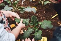 Οι μικροί κηπουροί του Παιδικού μας Σταθμού