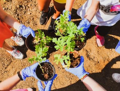 Πρότυποι μικροί κηπουροί… εν δράσει
