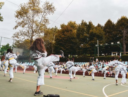 Τμήμα Tae kwon do: Τεχνικές και βηματισμοί μιας πολεμικής τέχνης